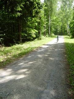 FOTKA - cesta na Nov� Hrad 17