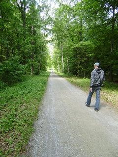 FOTKA - cesta na Nov� Hrad 19