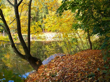 FOTKA - 18.10.12, odpolední procházka, u rybníka