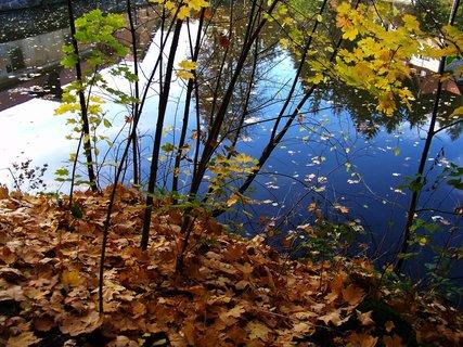FOTKA - 18.10.12, rybník s odrazem mlýna a hájovny...