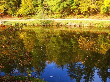 FOTKA - 18.10.12, rybník s odrazy stromů