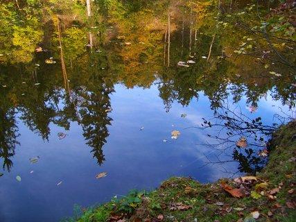 FOTKA - 18.10.12, odrazy stromů u břehu..