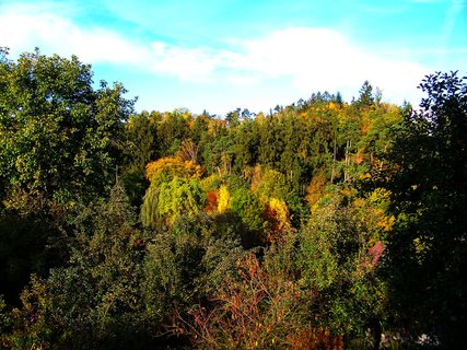 FOTKA - 19.10.2012, Kunratický les