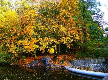 FOTKA - 19.10.2012, rybník u splavu...