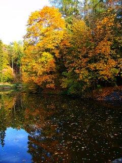 FOTKA - 19.10.2012, rybník obklopen podzimem..