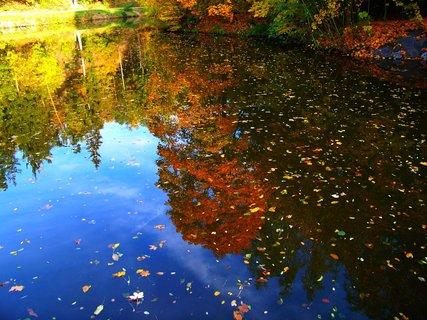 FOTKA - 19.10.2012, hladina jako zrcadlo...