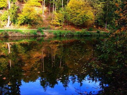 FOTKA - 19.10.2012, hladina rybníka s protější cestou kolem lesa