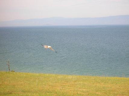 FOTKA - Bajkal 12
