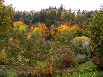 FOTKA - 25.10.12, podhled do údolí na Kunratický les..