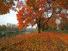 podzimní  toulání kolem řeky