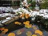 podzimní apríl u zahradního jezírka