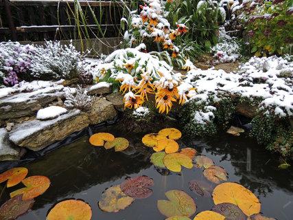 FOTKA - podzimní apríl u zahradního jezírka
