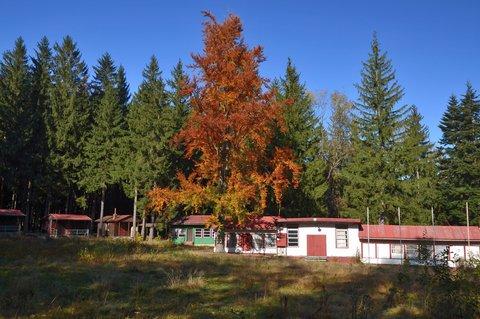 FOTKA - Podzim ve starém kempu