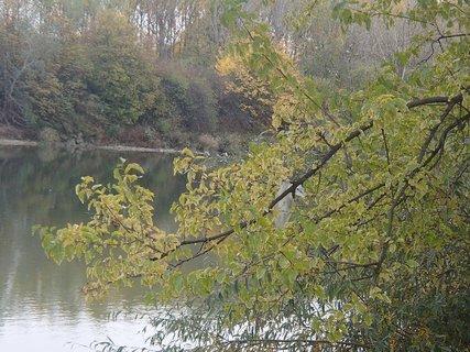 FOTKA - pri rieke...