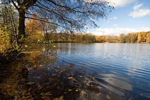 FOTKA - Podzim u Leont�ny