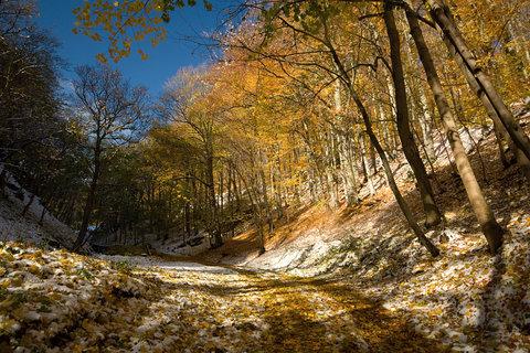 FOTKA - Cesta na hrad