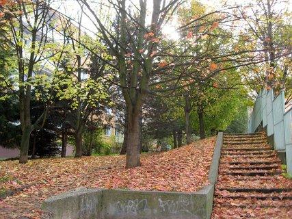 FOTKA - Podzim na s�dli�ti  7