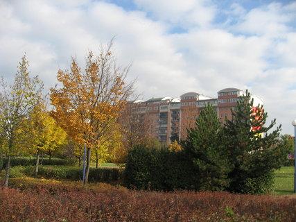 FOTKA - Podzim na sídlišti  11