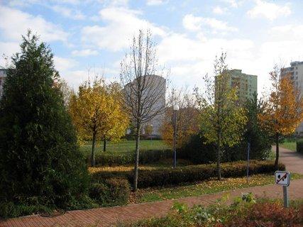 FOTKA - Podzim na s�dli�ti  18