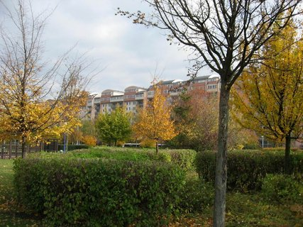 FOTKA - Podzim na sídlišti  21