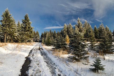 FOTKA - První sníh..
