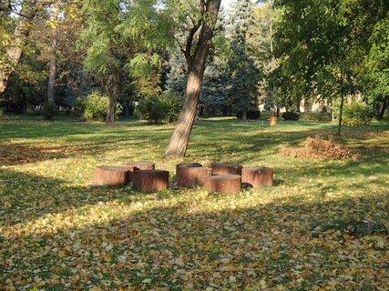 FOTKA - spadnuté lístie v parku.