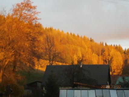 """FOTKA - Dnešní západ slunce-""""zlaty les"""",,"""