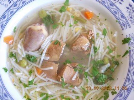 FOTKA - kachní drůbková polévka