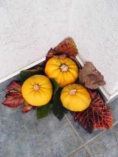 FOTKA - jesenná dekorácia.