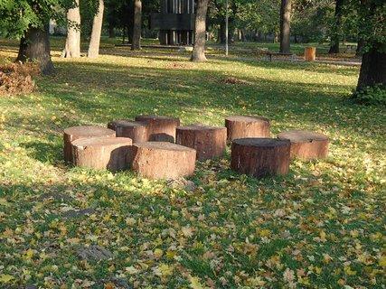 FOTKA - pníčky v parku