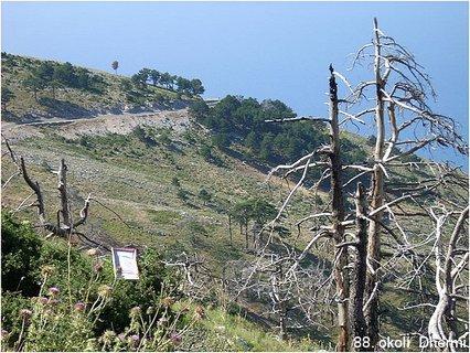 FOTKA - 88. Albánie