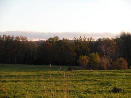 FOTKA - příroda 5.