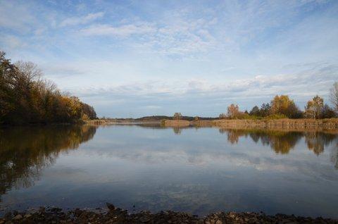 FOTKA - Bohdanečský rybník