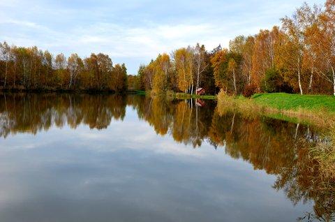 FOTKA - Listopadové zrcadlení Bohdanečských rybníků