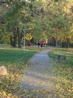 FOTKA - jeseň v parku