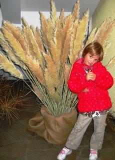 FOTKA - Adélka v botanický zahradě