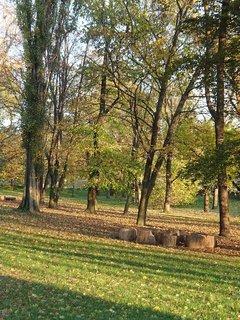 FOTKA - jeseň v parku...
