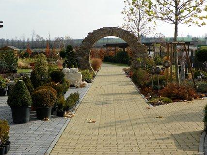 FOTKA - Procházka podzimním zahradnictvím Hortis