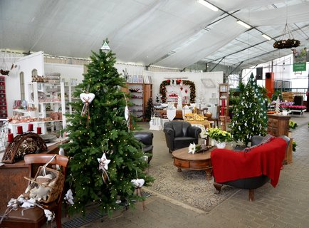 FOTKA - Vánoční výstava zahradnictví Starkl