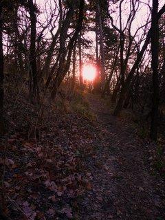 FOTKA - Slunce nad Bořněm