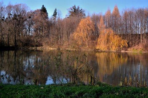 FOTKA - Posledmí barvy podzimu