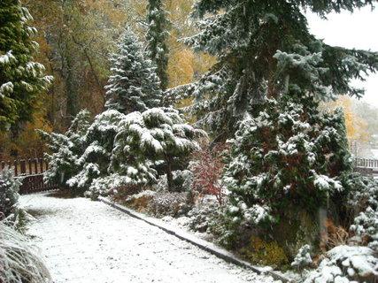 FOTKA - zima3