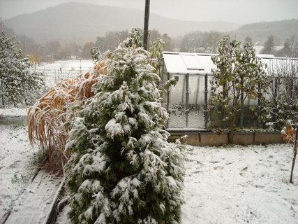 FOTKA - zima10