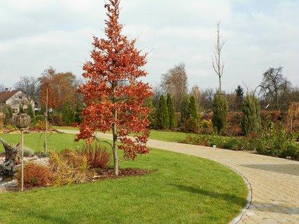 FOTKA - Procházka podzimním zahradnictvím Hortiss