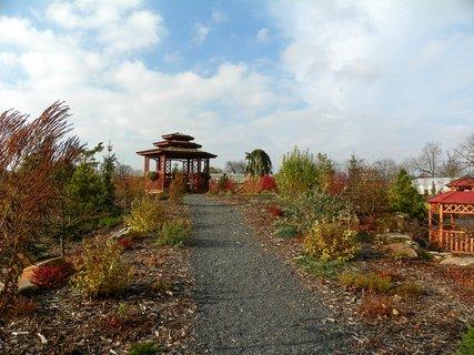 FOTKA - Podzimní cesta