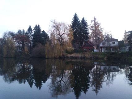 FOTKA - 24.11.2012.....