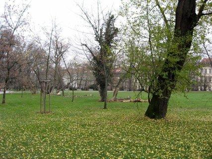 FOTKA - Petřín 5