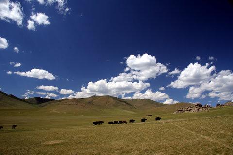 FOTKA - Mongolsko, Bulgan 7
