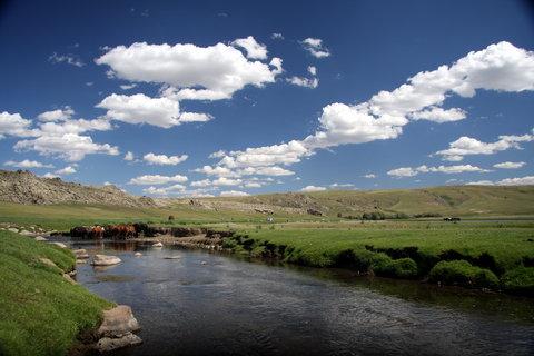 FOTKA - Mongolsko, Bulgan 25