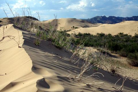FOTKA - Mongolsko, Bulgan 36